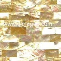 Cheap Shell Tile (MT-Y09) for sale