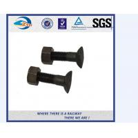 Cheap Grade 4.8 / 8.8 Railway Bolt , Hot Galvanized Fish Bolt And Nut for sale