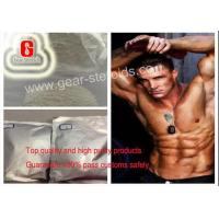 Cheap 62-90-8 Nandrolone Drug Nandrolone Decanoate Injection For Bodybuilding for sale