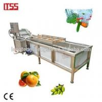 Cheap Factory supply vegetable washing machine add pictures pickled vegetables packing company for sale