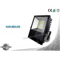 Cheap IP65 High Quality Fins Led Flood Light 200W for Buildings, Square, Landscape Lighting wholesale