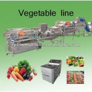 Cheap Vegetable washing machine/potato peeling machine vegetable processing line leafy vegetables for sale