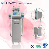 Cheap 2016 popular Cryolipolysis slimming Beauty machine for freezing fat cell with CE approval wholesale
