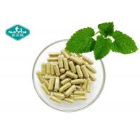 Cheap Stress Management Herbal Supplements / Lemon Balm Melissa Officinalis Leaves Extract for sale