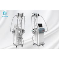 Cheap Fat Reducing Cryolipolysis Slimming Machine  / Cryolipolysis At Home Machine for sale