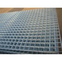 Cheap welded wire mesh panel for sale