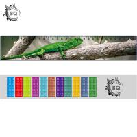 Quality High Definition Motion 3D Lenticular Ruler Animal Design For Students wholesale