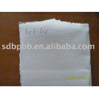 China TCF and ECF Environmental Bleached Reed Pulp on sale