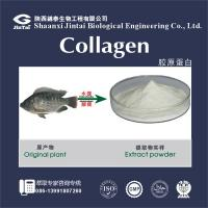 China collagen hair treatment fish skin pure collagen powder on sale