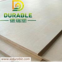 Cheap High Quality Birch Plywood BB/CC grade for furniture from XuZhou Durable for sale