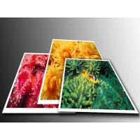Cheap 200G PP Paper for sale