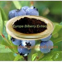 Cheap Bilberry Extract for sale