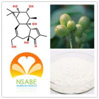 China 17673-25-5 Natural Powdered Herbal Extracts High Purity Phorbol HPLC>98% on sale