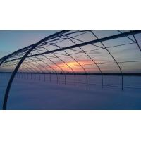 Cheap Russia greenhouse wholesale