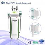 Hot Sale Cryolipolysis Machine Five Handles Cryolipolysis Fat Freeze Slimming Machine
