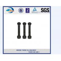 Cheap SGS BV Railway Fastener Hex Head Anchor Bolt HDG Railway Bolts for sale