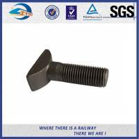 Quality High Tensile Q235 Steel Bolts And Nuts With Hot Dip Galvanized / Zinc Plated Surface wholesale