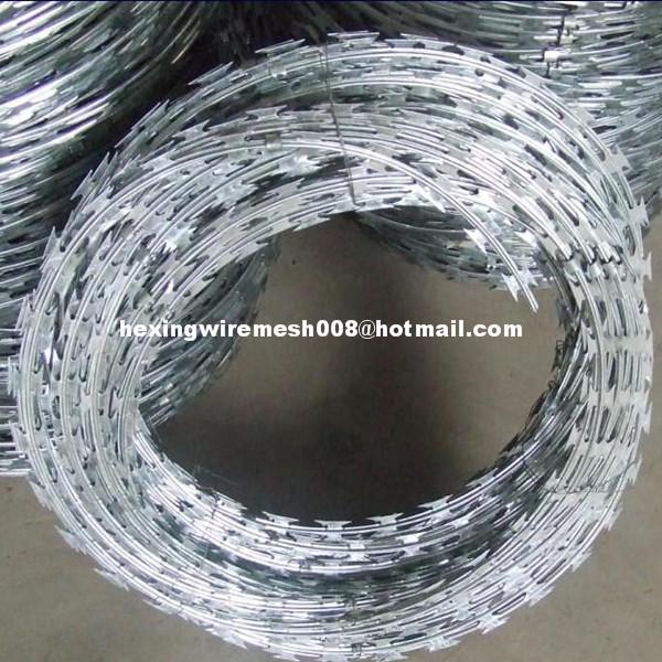 Razor barbed wire coil of june liu