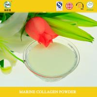 China Private label health food hydrolyzed collagen powder on sale