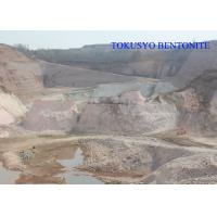Cheap Heat Resistance Sodium Bentonite , Casting and Foundry Bentonite Powder for sale