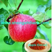 Cheap Apple Extract/ Apple Skin Extract for sale