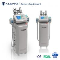 Cheap New design 5 handles cryolipolysis slimming machine with top quality for sale