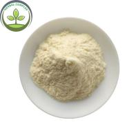 China China Supplier Frozen Apricot Fruit Powder In Bulk Stock on sale