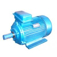 Cheap Triple-Phase Asynchronous Motor for sale