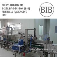 Cheap Fully-automatic 5-10-20 Litre BiB Filling Machine Bag in Box Cartoning Line for sale