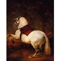 Cheap Animal Reproduction Oil Painting for sale