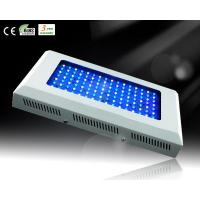 Cheap 120W White&Blue LED Aquarium Light for Reef Growth for sale