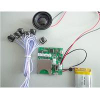 Cheap SD card recording module for electronic toys can be stock large capacity file for sale