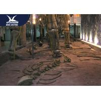Buy cheap Large Artificial Fiberglass Dinosaur Fossil Realistic Replicas 12 Months Warranty from wholesalers