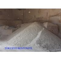 Cheap Montmorillonite / Smectite Sodium Bentonite High Purity 300 / 500 Mesh for sale