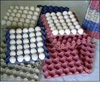 China Coal Roller Pulp Molding Machine , Paper Egg Tray Making Machine 2000pcs/h on sale