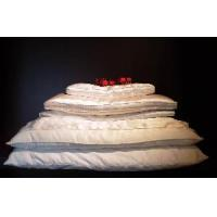 China Silk Pillow & Silk Pillow Cover on sale