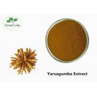 Buy cheap Yarsagumba Extract Powder from wholesalers