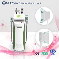 Cheap Cryolipolysis Coolsculpting Machine Zeltiq fat Freeze Slimming Equipment for sale
