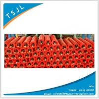 China Conveyor Carring paint Roller on sale