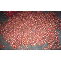 Cheap Pure Natural Red / Yellow Onion Shallot Contains Iron Magnesium Copper for sale