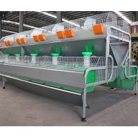 Cheap Meat Rabbit Poultry Farming Cage Cheap Female Rabbit Cage/ Industrial Rabbit Cage for sale
