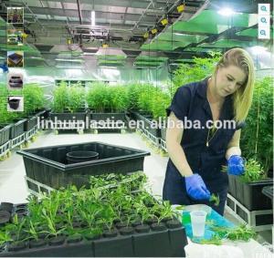 Large plastic growing trays plastic black plastic plant pots with wheels