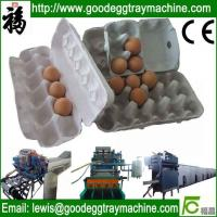 China Egg tray plant pulp moulding machine on sale