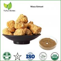 Cheap Maca Extract,maca root powder,maca root extract,maca powder,organic maca powder for sale