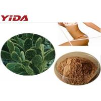 Cheap Hoodia Gordonii Cactus Extract Weight Loss Steroids for sale