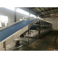 Cheap Industrial PET Limestone Desulfurization Mesh Belt Filter Fabric for sale