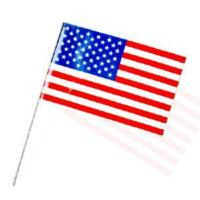 Cheap PE Cheering Hand Flag (H-FD003) for sale