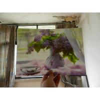 Cheap New year Hot sale 3D lenticular painting photoshow 3d depth effect with flip motion zoom made by UV printing for sale