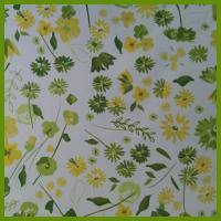 Cheap Freshness spring style printed flower table decration cloth made by BSCI audit supplier for sale