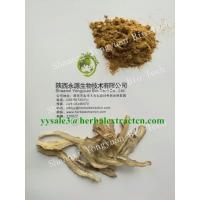 China Dong Quai Extract, Angelica Extract, Ligustilide 1%, CAS No.: 4431-01-0, TCM Extract, High quality, Shaanxi Yongyuan Bio on sale